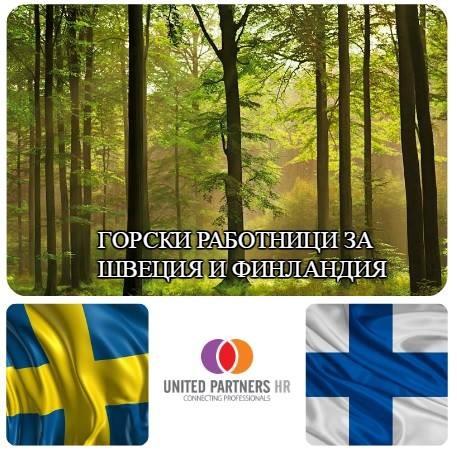 """Фирма партньор на """"Wir Helfen 24"""" търси да назначи горски работници за работа в Швеция и Финландия"""