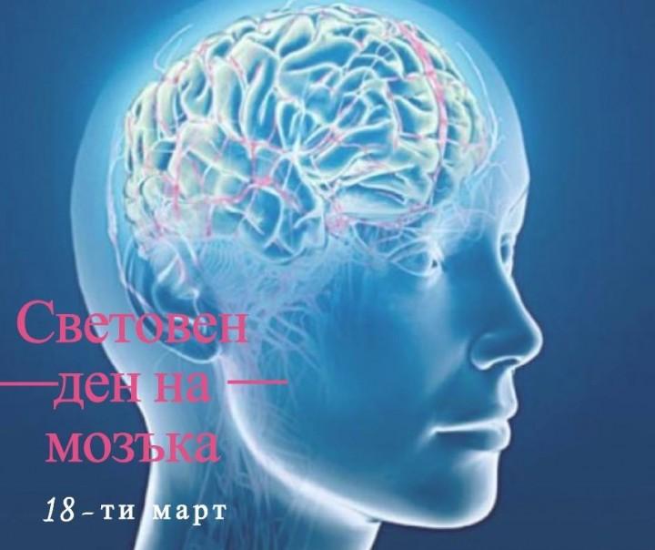 Днес е Световен ден на мозъка