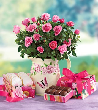 Честит рожден ден на Марина Алексиева